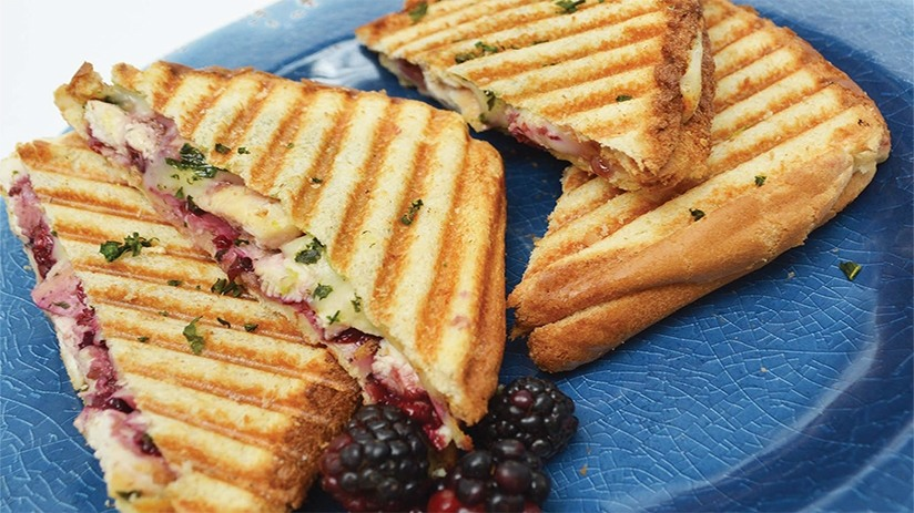 Blackberry-Chicken Grilled Cheese Panini